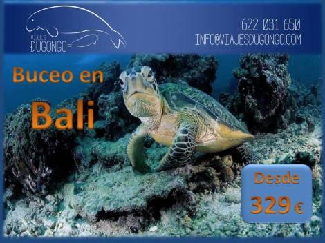 buceo en Bali,los mejores sitios de buceo,los mejores lugares de buceo,buceo en Batu Niti,buceo en Badtu Dawa,buceo en Amed Wall,buceo en Blue Moon,