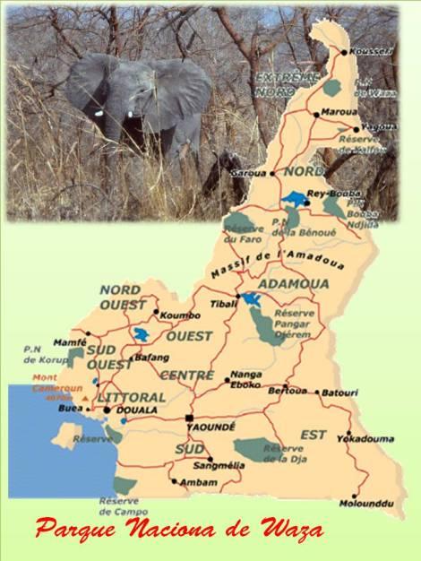 Parque Nacional de Waza, Destinos exóticos y de aventura en África